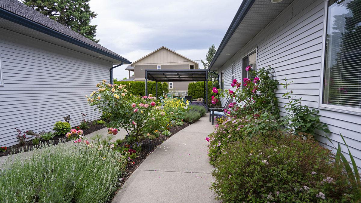 Rear garden and walkway